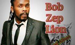 Concert, GENERAL BOB ZEP LION au